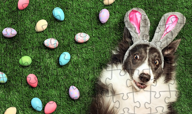 Create an amazing Easter gift for your kids